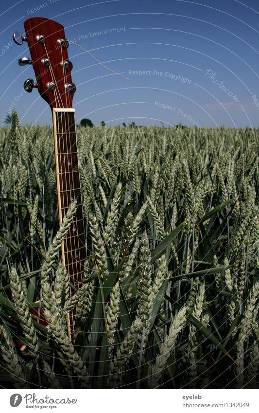 Unkraut vergeht nicht Freizeit & Hobby Spielen Ferien & Urlaub & Reisen Ausflug Musik Erntedankfest Gitarre Saite Musikinstrument Umwelt Natur Landschaft