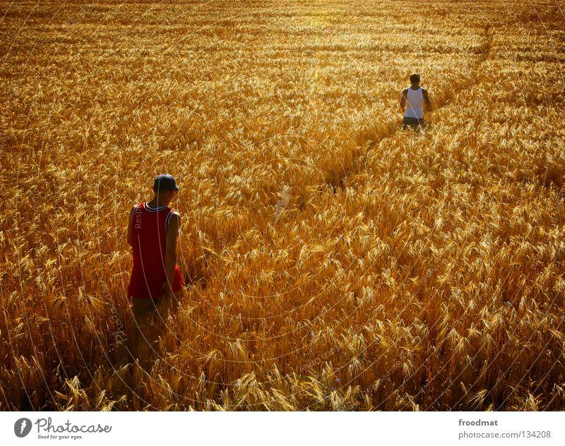 Feldweg Natur Jugendliche Sommer ruhig Erholung Umwelt gelb Ernährung Wärme orange Zufriedenheit Feld gold wandern Spaziergang Romantik