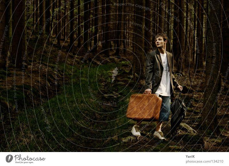 lost Mann alt Baum Einsamkeit Wald dunkel Stein braun gehen wandern Suche verrückt Trauer T-Shirt Jeanshose Spaziergang