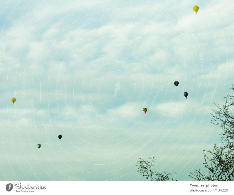 Blick aus dem Fenster Ballone Hintergrundbild Stimmung Sommer mehrfarbig Wolken Baum Sträucher frei über den Wolken Luft Veranstaltung Ereignisse Rundfahrt