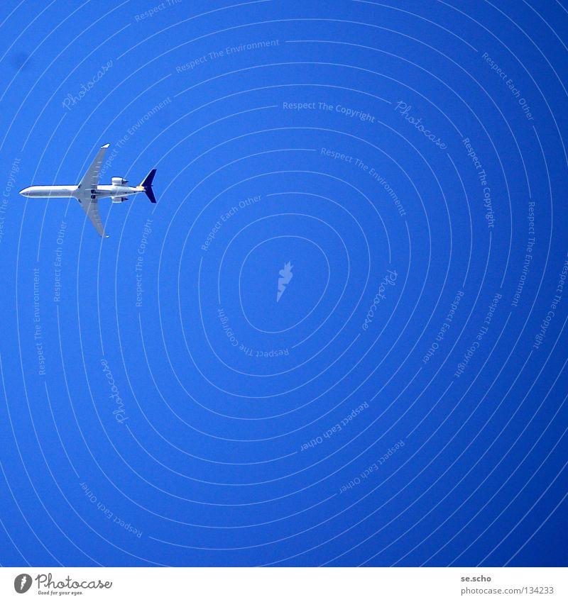 Und jetzt... ? Fluggerät Flugzeug himmelblau Ferien & Urlaub & Reisen Luftverkehr Himmel Beginn Flugzeuglandung Ende Wetter