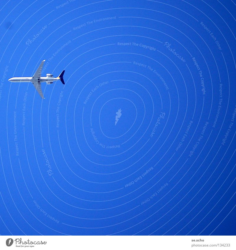 Und jetzt... ? Himmel blau Ferien & Urlaub & Reisen Flugzeug Wetter Beginn Luftverkehr Ende Flugzeuglandung himmelblau Fluggerät