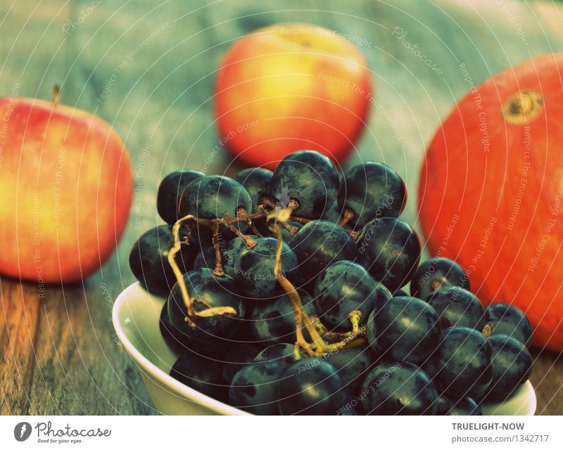 Schönheit des Herbstes... Natur blau Farbe weiß Erotik gelb Wärme natürlich Gesundheit Glück Lebensmittel Frucht orange frisch Idylle Ernährung