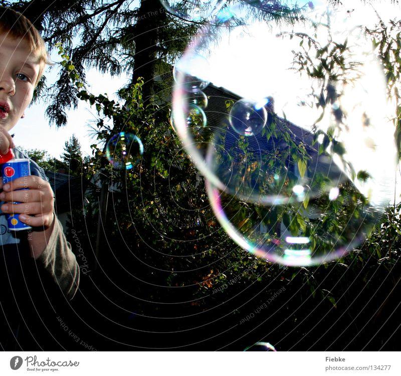 Soap Bubble Boy Seifenblase Kind Sommer Spielen Baum Sträucher Haus mehrfarbig Überraschung Hand skeptisch rot schimmern Schweben Spielzeug klein seltsam