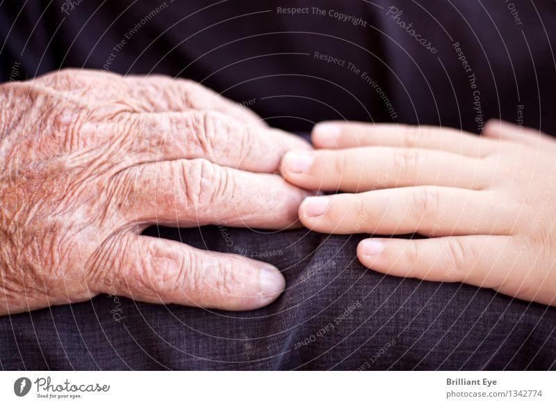 Berühren.. Mensch alt Hand Wärme Liebe Gefühle Senior Junge Zusammensein maskulin authentisch Kindheit Lebensfreude Warmherzigkeit berühren Hilfsbereitschaft