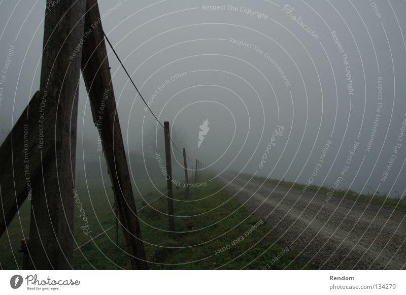 Blick in die Zukunft Straße Freiheit Nebel frei neu Zukunft Rasen Fußweg Zaun Rauch vorwärts ungewiss Stacheldraht Fluchtpunkt