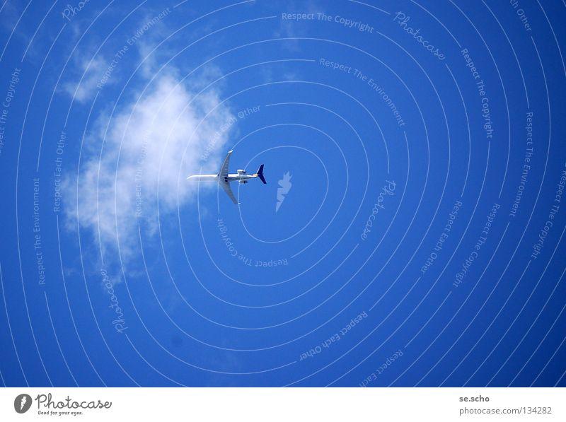 Und weg! Flugzeug Passagierflugzeug Wolken Himmel weiß Luftverkehr Ferien & Urlaub & Reisen Firmament blau