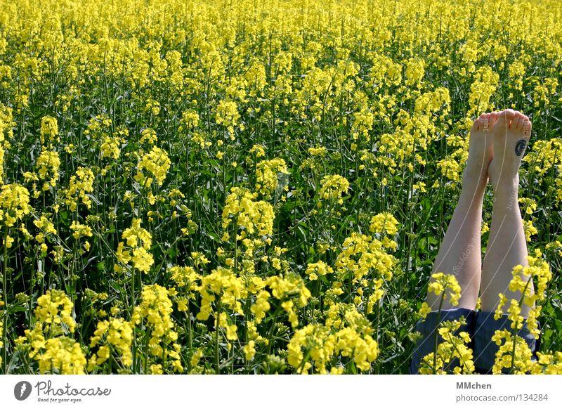 RaRaRapsputin Natur grün Pflanze Ferien & Urlaub & Reisen Ernährung gelb Erholung Blüte Frühling Fuß Landschaft Beine Feld Lebensmittel Ausflug