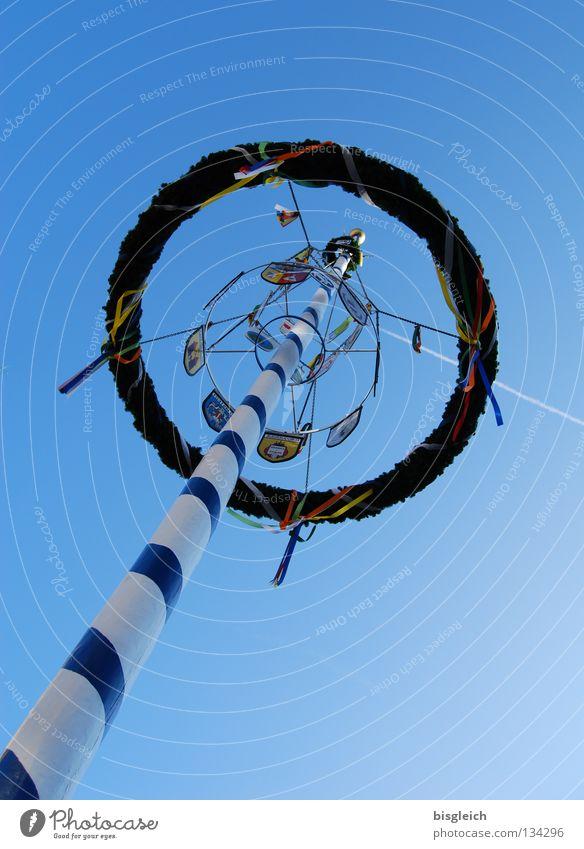 Maibaum II Farbfoto Außenaufnahme Menschenleer Froschperspektive Feste & Feiern Luftverkehr Himmel Frühling Baum Flugzeug blau Tradition Kondensstreifen Kranz