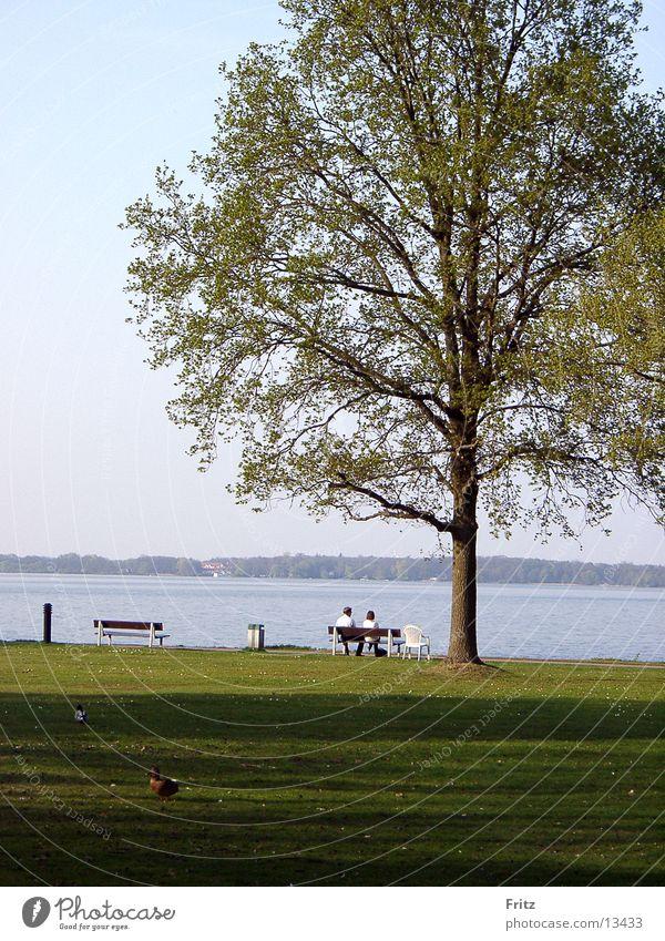 zwei-am-see Mensch Frühling Paar See 2 paarweise
