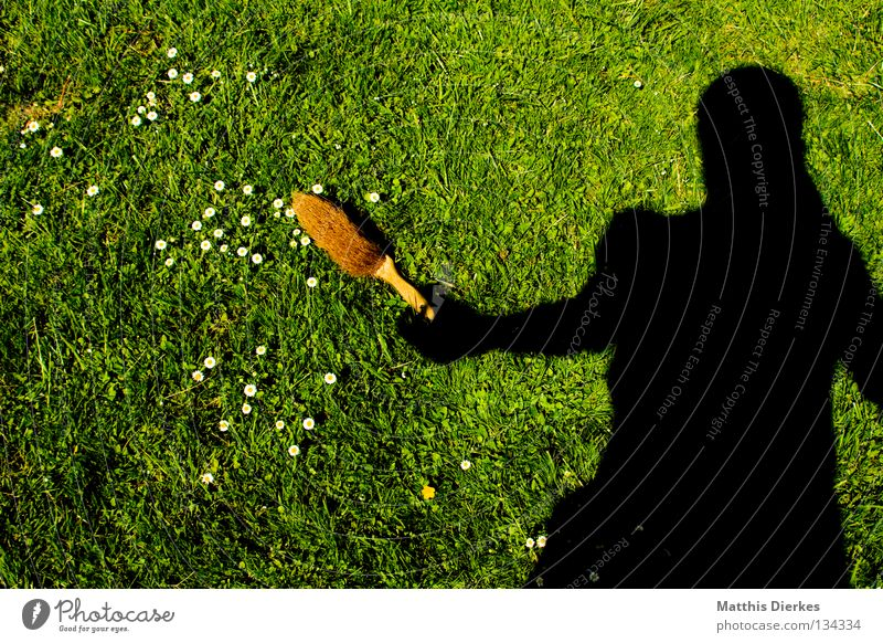 Frühjahrsputz Mensch Sommer Wiese Frühling Garten Arbeit & Erwerbstätigkeit Ordnung Häusliches Leben Flügel Reinigen Sauberkeit Rasen Umzug (Wohnungswechsel)