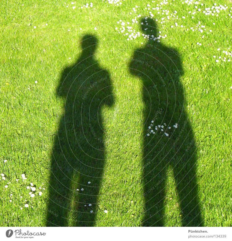 Zwei I I Mensch grün Sonne Sommer Wiese dunkel sprechen Gras Garten klein Beine Paar hell 2 Schatten Zusammensein