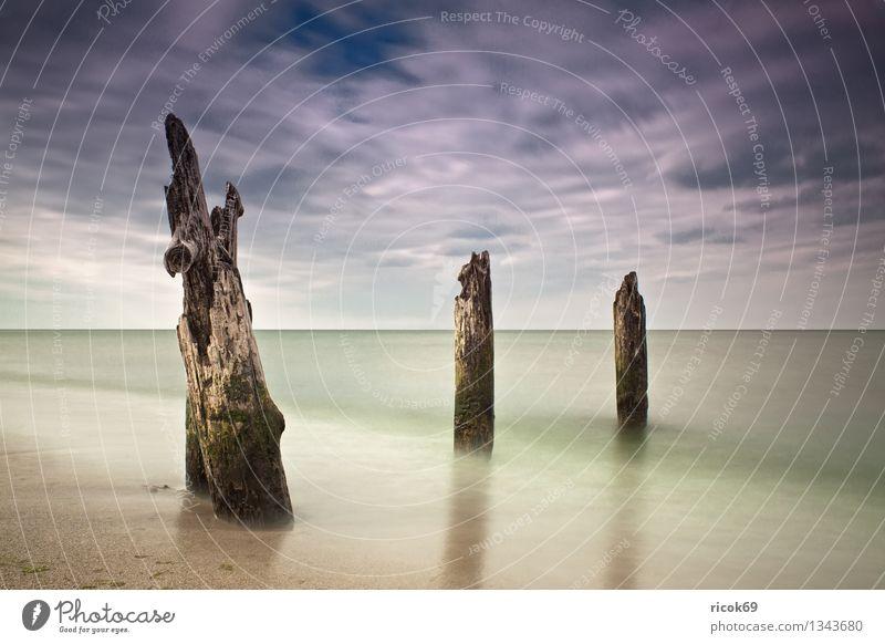 Ostseeküste Strand Meer Natur Landschaft Wasser Wolken Küste alt blau Romantik Idylle ruhig Buhne Himmel Mecklenburg-Vorpommern Buk Kühlungsborn verwittert