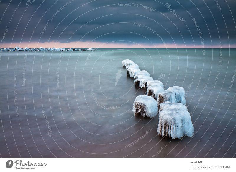 Ostseeküste im Winter Strand Natur Landschaft Wasser Wolken Wetter Eis Frost Küste kalt Ferien & Urlaub & Reisen ruhig Tourismus Buhne Schnee Wustrow