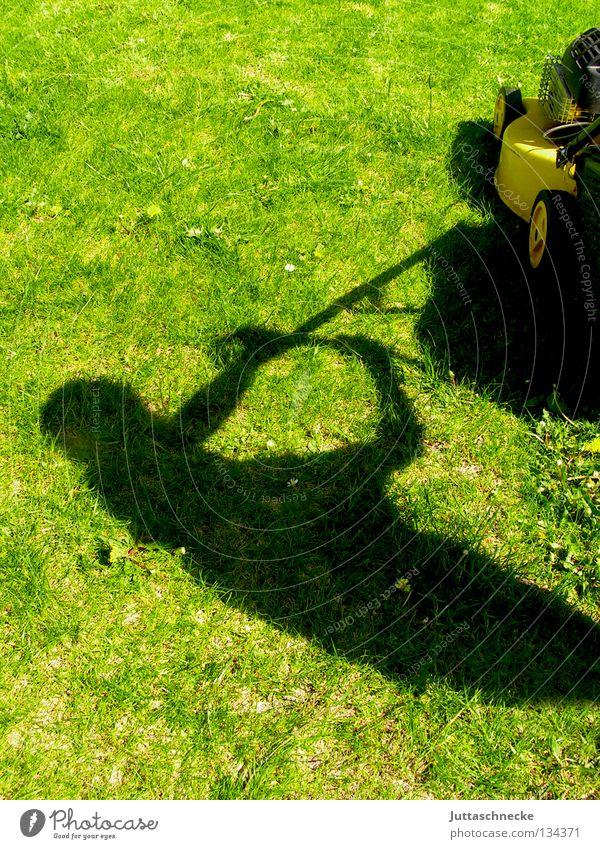 Was muss, das muss Wiese Gras Rasenmäher grün geschnitten kurz Gärtner Gartenarbeit Freizeit & Hobby Arbeit & Erwerbstätigkeit Wochenende Sommer Frühling
