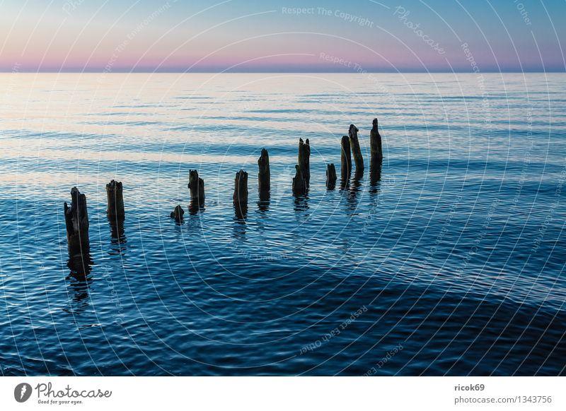Buhne an der Ostseeküste Natur Ferien & Urlaub & Reisen alt blau Wasser Meer Landschaft ruhig Wolken Strand Küste Tourismus Idylle Romantik