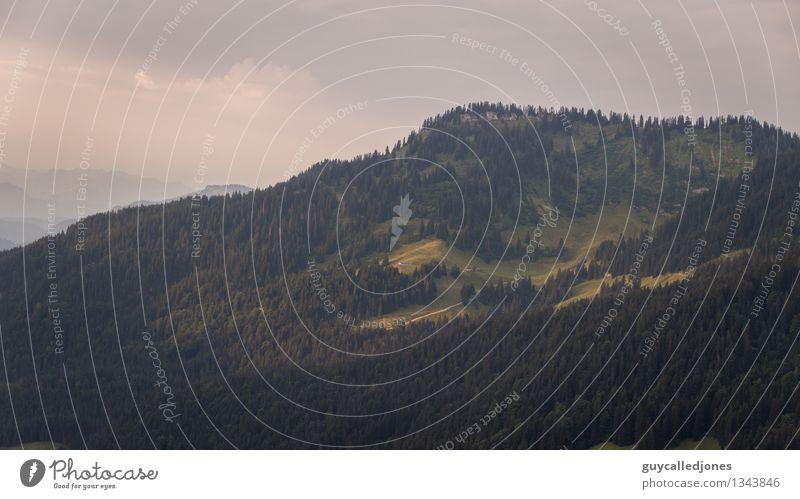 Alm Umwelt Natur Landschaft Hügel Alpen Berge u. Gebirge Alpenvorland Gipfel entdecken Erholung wandern natürlich Wärme Abenteuer Ferien & Urlaub & Reisen