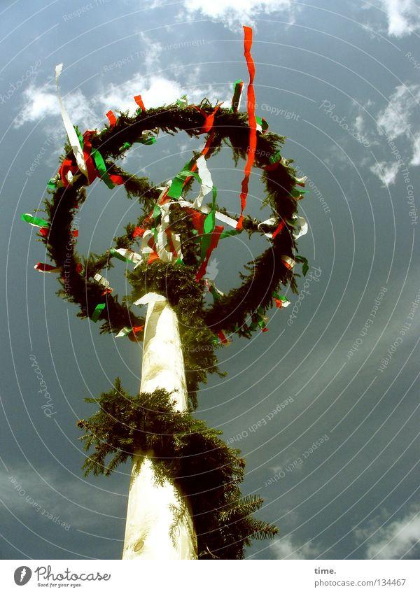 Jetzt ist mehr Wind da, stellt Lukas fest Himmel grün Baum Wolken oben Frühling Holz hoch frei frisch Dekoration & Verzierung rund Baumkrone wehen Pfosten Stab