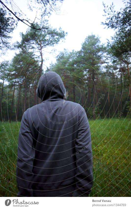 herbstrückennaht Mensch maskulin Rücken 1 authentisch Kapuze Wald Faltenwurf grau Waldspaziergang Gras Wachstum nachdenklich kalt Stoff Herbst Arme Einsamkeit