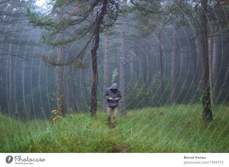 brille? Mensch maskulin Mann Erwachsene 1 45-60 Jahre Umwelt Natur Pflanze Baum Gras Wald Fußgänger Gefühle Stimmung ruhig Einsamkeit wandern Spaziergang Brille