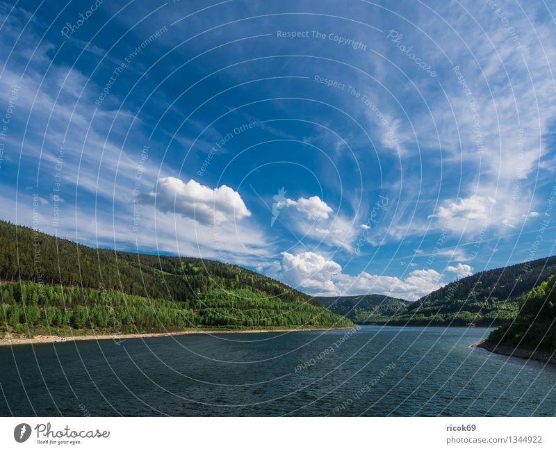 Stausee Leibis/Lichte Natur Landschaft Wasser Wolken Frühling Baum Wald Sehenswürdigkeit blau Idylle Ferien & Urlaub & Reisen Tourismus Talsperre Unterweißbach