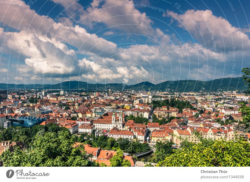 Graz City Leben harmonisch Wohlgefühl Ferien & Urlaub & Reisen Tourismus Ausflug Natur Pflanze Tier Wolken Sommer Schönes Wetter Baum Sträucher Hügel Alpen