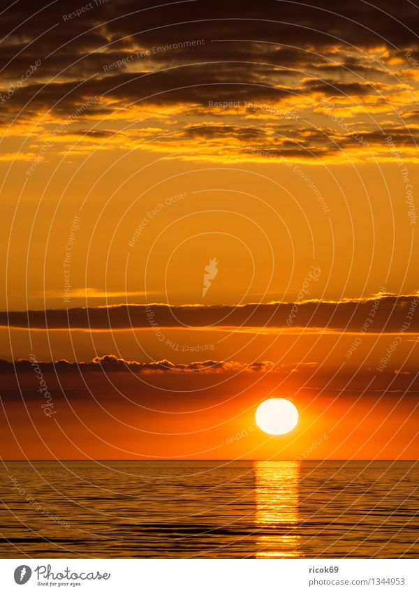 Ostseeküste Natur Ferien & Urlaub & Reisen Wasser Sonne Meer ruhig Wolken Strand Küste Tourismus Idylle Wellen Klima Romantik Schönes Wetter