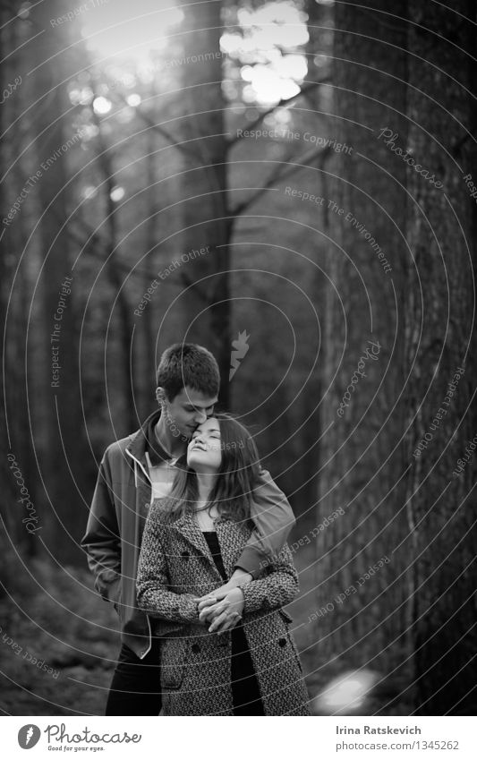 Mensch Frau Natur Jugendliche Mann schön Baum Freude 18-30 Jahre Wald Erwachsene Leben Liebe Gefühle Stimmung Paar