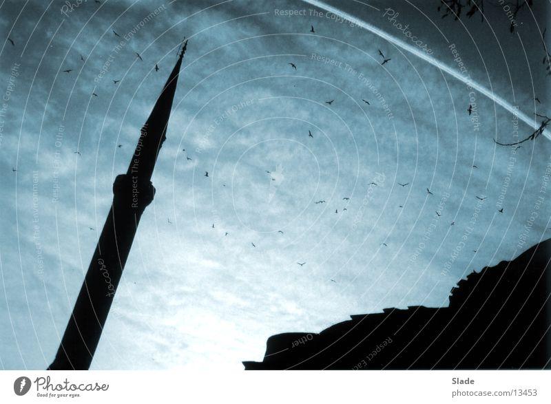 Abenstimmung in Istanbul Minarett Moschee Wolken Freizeit & Hobby Abend Himmel
