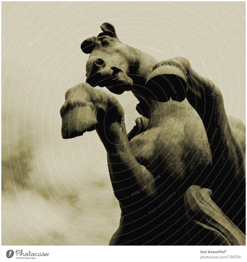 sarpedon° Wolken Angst Pferd Macht gefährlich bedrohlich Paris Statue Verkehrswege gigantisch gewaltig