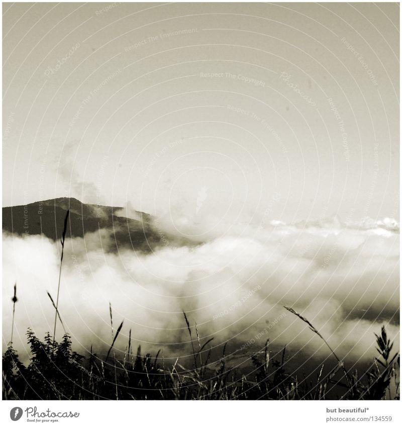 poetry° Spanien Luft Wolken über den Wolken himmlisch Einsamkeit ruhig Schwarzweißfoto Berge u. Gebirge Jakobsweg Camino de Santiago O'Cepreiro Freiheit Frieden