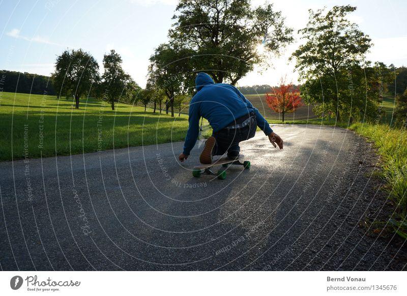 kariert Sport Gefühle Stimmung Freude Asphalt Skateboard Skateboarding abwärts hocken Geschwindigkeit Kapuze Gegenlicht Baum Wiese Sonnenlicht himmelblau grün