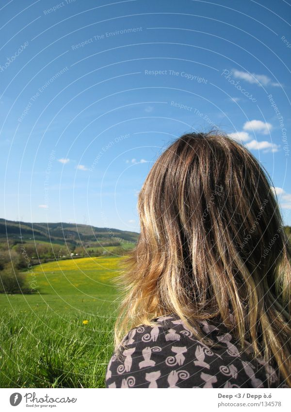 You rocks my socks Himmel weiß Baum Blume grün blau Sommer schwarz Wolken gelb Wiese Gras Berge u. Gebirge Haare & Frisuren Katze Landschaft