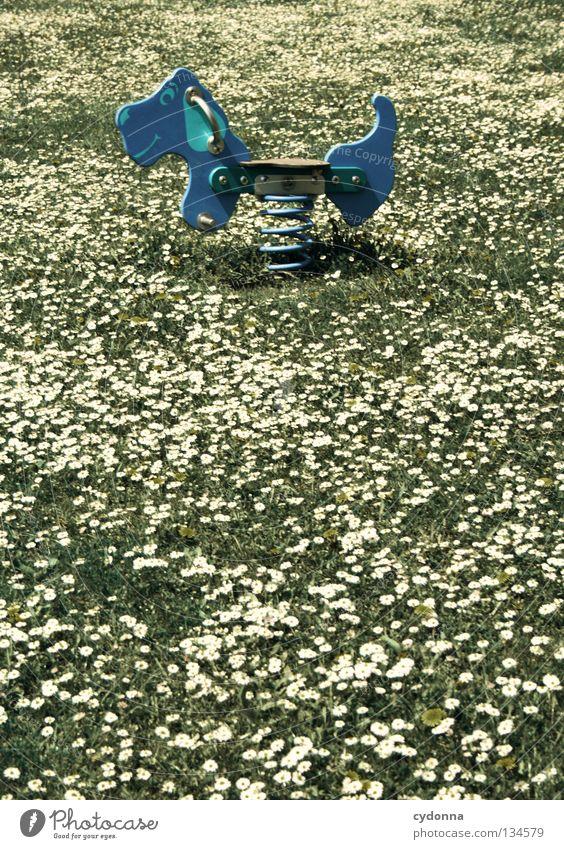 Kindheitsträume Hund blau schön Blume Freude Wiese Spielen Gefühle Bewegung Frühling Glück Gesundheit Arbeit & Erwerbstätigkeit Freizeit & Hobby