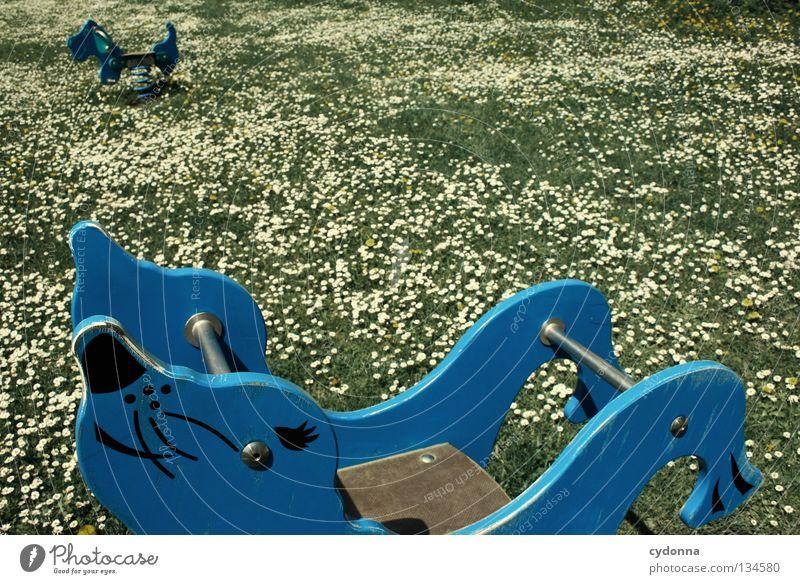 abtauchen/ eintauchen Hund blau schön Blume Freude Wiese Spielen Gefühle Bewegung Frühling Glück Gesundheit Arbeit & Erwerbstätigkeit Kindheit Freizeit & Hobby