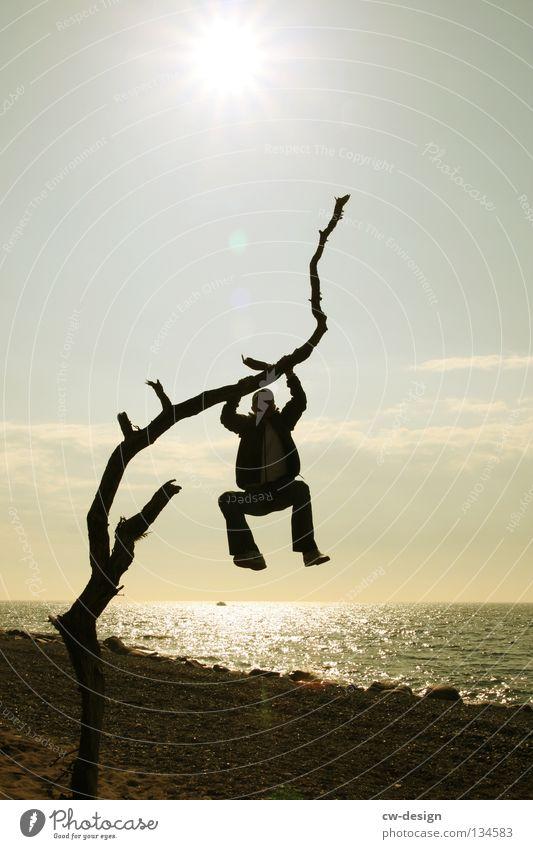 EINFACH MA ABHÄNG Baum Baumstamm morsch Meer See Strand Sandstrand Blende blenden Gegenlicht dunkel schwarz mehrfarbig Licht Silhouette Mann maskulin Kerl
