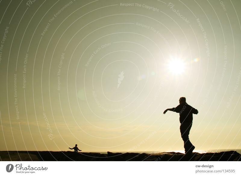 SCHMEISS DIE MÖBEL AUS DEM FENSTER springen hüpfen lustig Freude Stimmung Baum Baumstamm morsch Meer See Strand Sandstrand Blende blenden Gegenlicht dunkel