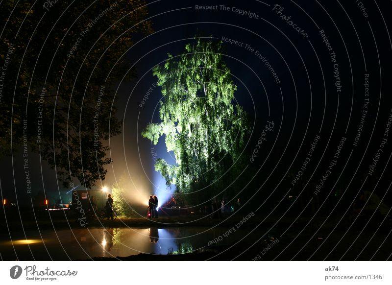 Birke Nacht Langzeitbelichtung Baum Gegenlicht dunkel Licht Freizeit & Hobby Fusion Musikfestival