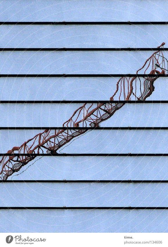 Baukran, funktionstüchtig (I) blau Arbeit & Erwerbstätigkeit Industrie Physik Alkoholisiert Handwerk Kran Linse unklar Treppenabsatz Eyecatcher Häuserzeile