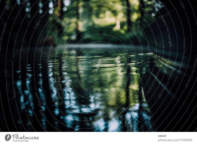 Spreedorado | Idylle Natur Landschaft Pflanze Wasser Schönes Wetter Baum Wald Flussufer Bach Schwimmen & Baden Flüssigkeit Wasserfahrzeug Kahn Wellen