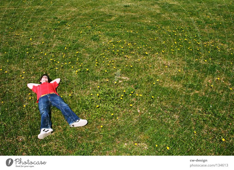 COME ON AND CHILL WITH ME II Mensch Mann Natur Jugendliche Blume grün blau Pflanze rot Sommer Erholung Wiese Gras Landschaft Glas maskulin