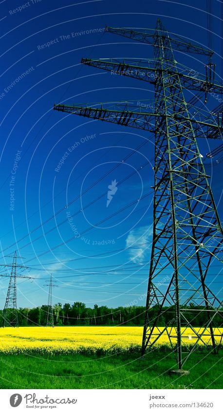 Energiefelder Himmel Natur blau grün gelb Umwelt Landschaft Frühling Feld Energiewirtschaft Elektrizität Landwirtschaft Stahl Strommast Bioprodukte Leitung