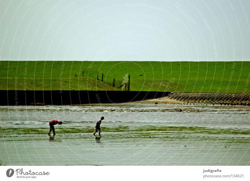 Watt Kind Natur Wasser Himmel grün Strand Ferien & Urlaub & Reisen Farbe Erholung Wiese Spielen Küste laufen Umwelt Suche Freizeit & Hobby