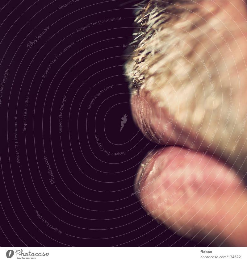 Body Parts I Mensch Mann Mund maskulin Lippen Bart stachelig Anschnitt Bildausschnitt rau Oberlippenbart Körperteile Barthaare Stoppel vergrößert unrasiert