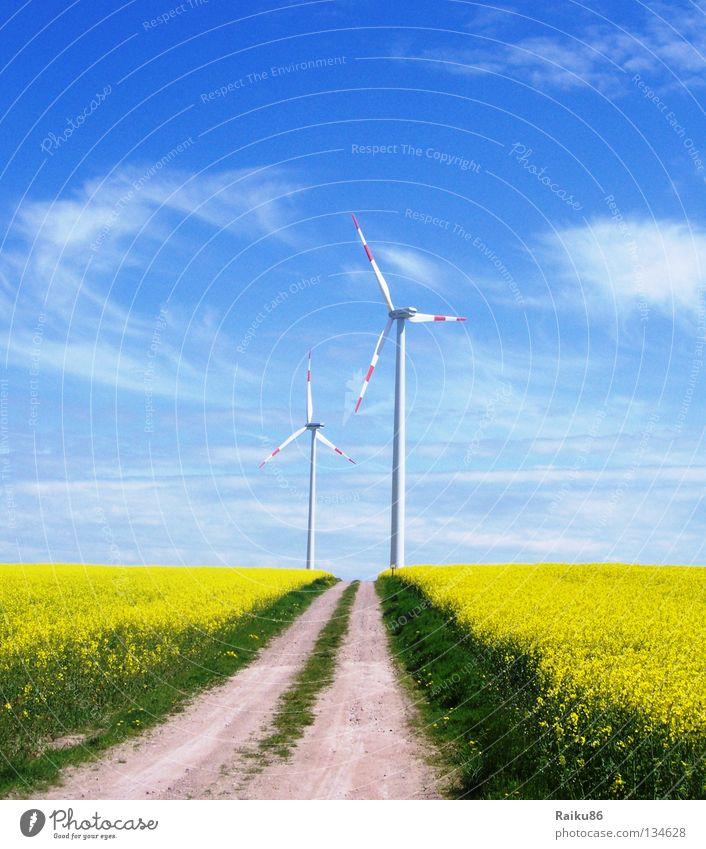 Windenergie Himmel Natur grün Sommer Sonne Landschaft Wolken Ferne Frühling Wege & Pfade Horizont Energiewirtschaft Luft Feld wandern Technik & Technologie
