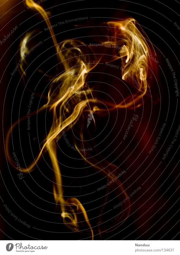 Leidenschaft rot gelb dunkel Wärme Spielen Kunst orange Hintergrundbild Tanzen Wind Brand gefährlich bedrohlich Vergänglichkeit Romantik Kultur