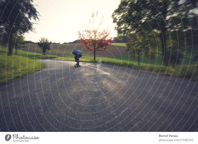 Hinterher Rücken 1 Mensch Bewegung abwärts Skateboard Aerodynamik Kurve Asphalt Straße Geschwindigkeit blau Baum Natur Feld Hügel Freude Sport Rolle Weitwinkel