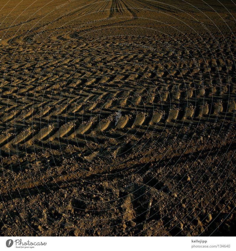 marsrover Landschaft Ferne Leben Lebensmittel Sand Stein PKW Arbeit & Erwerbstätigkeit Regen Erde Feld Perspektive Technik & Technologie Spuren Landwirtschaft trocken