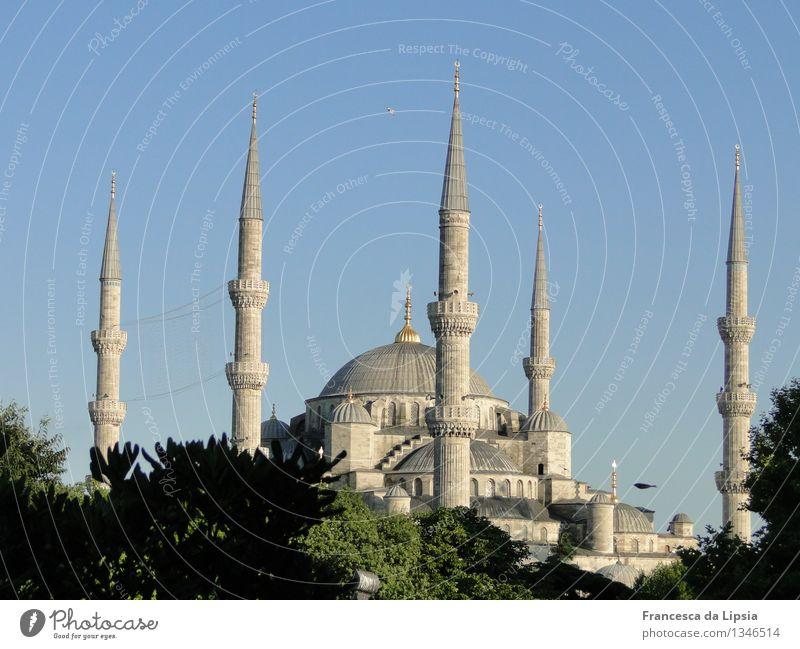 Die blaue Moschee Ferien & Urlaub & Reisen alt blau Sommer Ferne Architektur Religion & Glaube grau leuchten hoch Turm historisch Glaube Skyline Wolkenloser Himmel Wahrzeichen