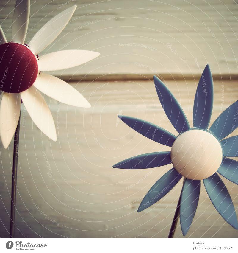 Rädchen dreh, Rädchen! Farbe Spielen Bewegung Frühling Garten Kunst Wind Energiewirtschaft Dekoration & Verzierung Spielzeug Kindheit Leidenschaft blasen drehen Windrad